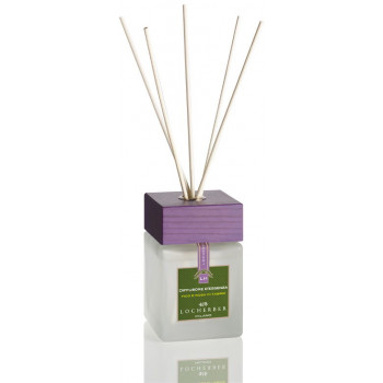 Ароматизатор воздуха с бамбуковыми палочками (250мл.)